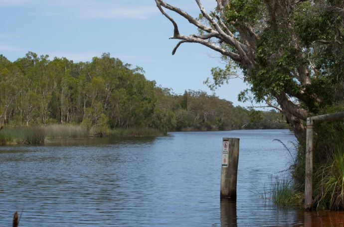 Noosa Everglades - beautiful - would love to go back with Kayaks.