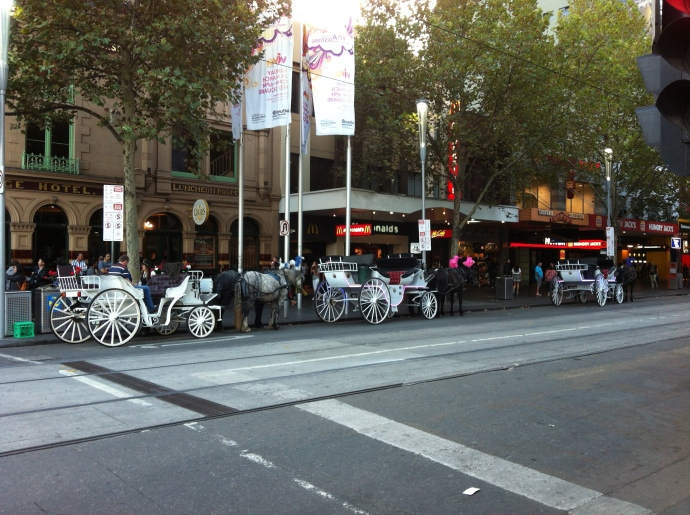 I couldn't convince Matt to take me for a spin around Melbourne in a horse and carriage - maybe for our 20 year anniversary!