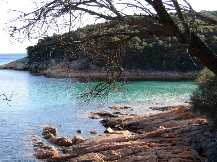 Heaps of walks with lovely scenery in the Freycinet National Park