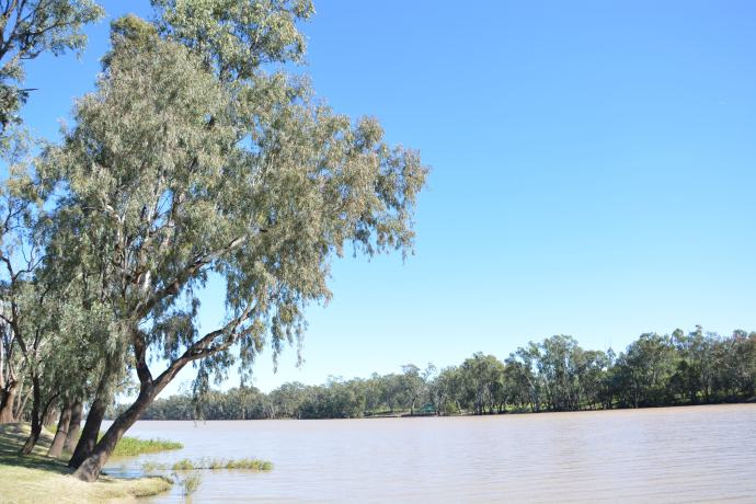 Ballone River - St George