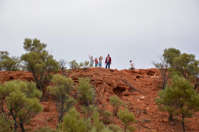 The lookout - Lark Quarry