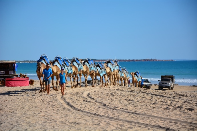 We choose the Blue Camel tour - run by Broome's original camel lady Alison Bird - and I got a few pair of tiny pearl earrings!