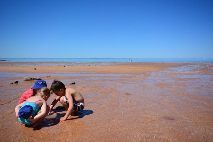 Exploring the rock pools at Roebuck Bay