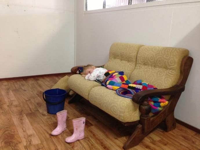 Lexi alseep in Matt's office in the packing shed while I ran the boys to school.