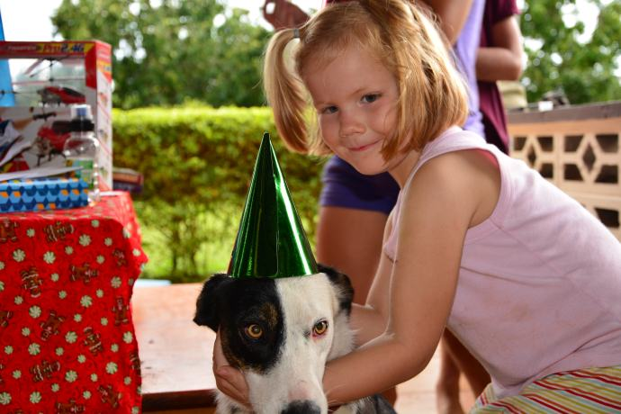 our new dog Patches got into the birthday party spirit!