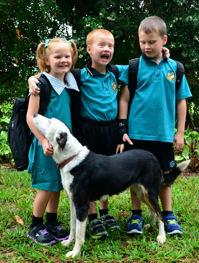 Fealy kids first day of school 2014.  Lexi in Prep, Toby Grade 1, Jack Grade 3