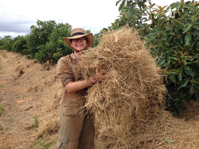 Julian spreading hay