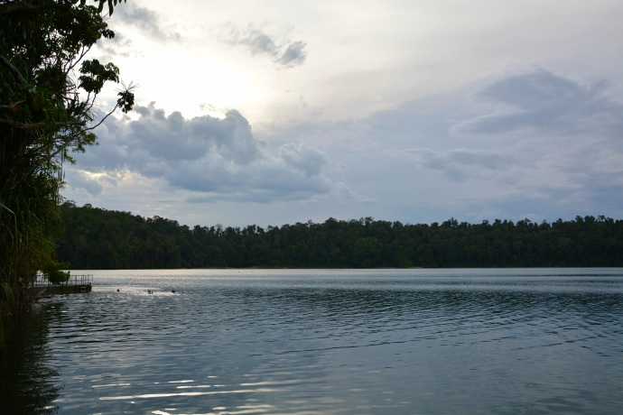 I'm putting it out there to say, Lake Eacham is the best swimming spot in all of Australia!