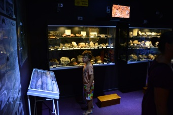 Jack in heaven checking out the Ted Elliot Mineral Collection