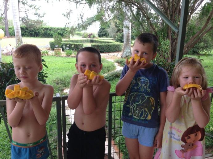 Mangos for breakfast!