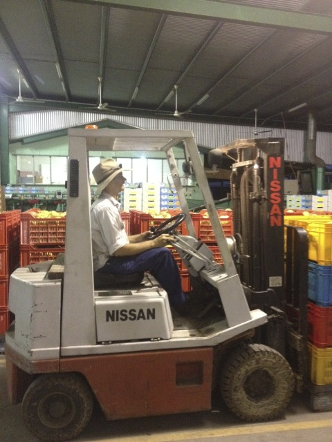 A laugh at the manager learning to drive the forklift!
